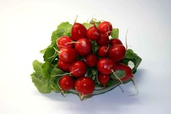Bright red radishes