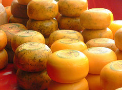 cheese of different varity