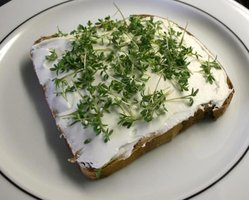 Cress bread