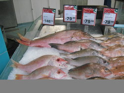 fish section