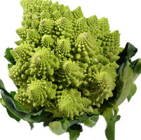 fresh green Romanesco
