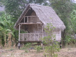 indogenous house