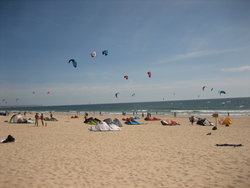 Kites at a beach