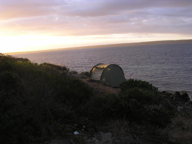 sea with plants and tent - free image