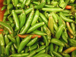 spicy green chilli