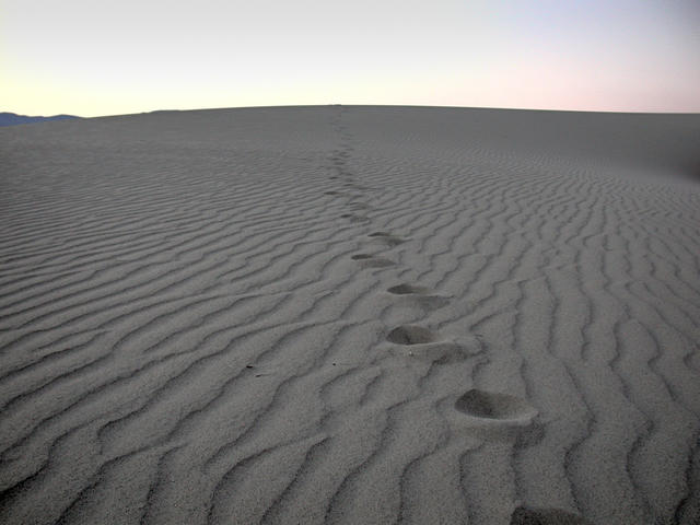 Image result for desert open source picture
