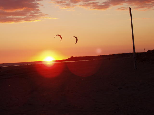sunset and kites - free image
