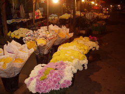Thailand Virtual flower market