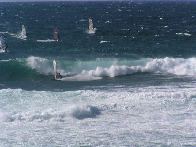 Wind surfing - free image