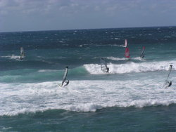 Windsurfing over to the crests
